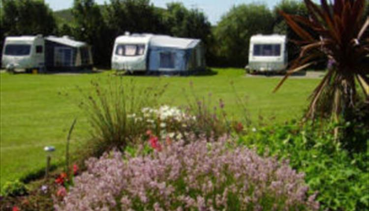 Yr Helyg - The Willows Touring Park