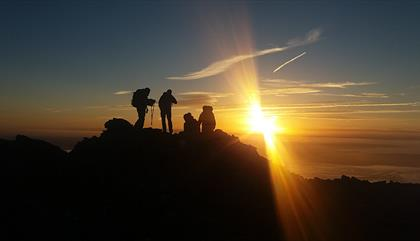 Anelu Aim Higher
