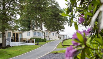Brynteg Holiday Park
