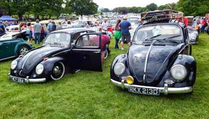 All Types VW Show