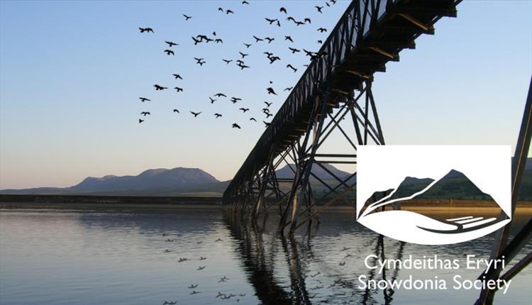 Walk: Discover Llyn Trawsfynydd