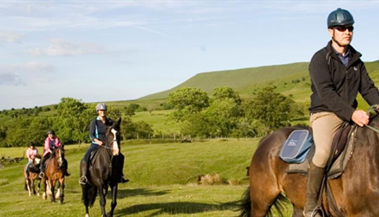 Wales Trekking & Riding Association