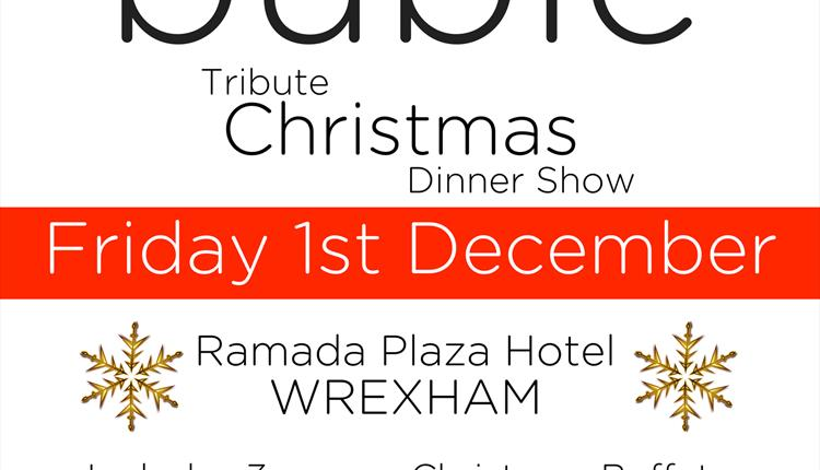 Michael Buble Tribute Christmas Dinner Show
