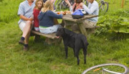 Llyn Cycle Centre