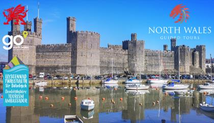 North Wales Guided Tours