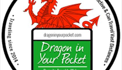 Dragon In Your Pocket