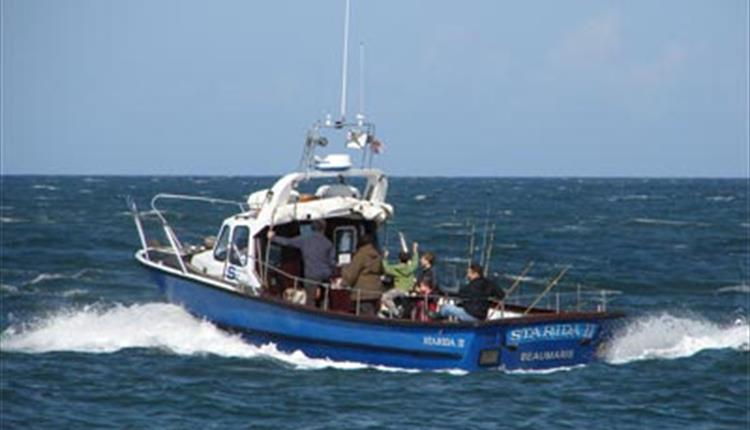 Starida Puffin Island Cruises & Fishing Trips